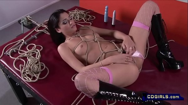 Whipping, Whip, Sybian